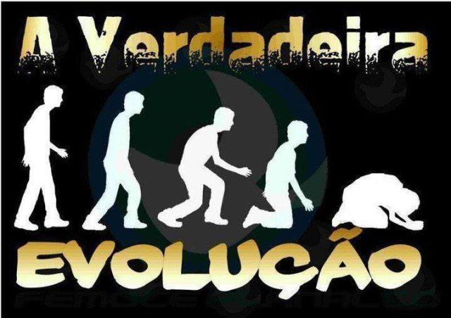 evoluc3a7c3a3o evolucao